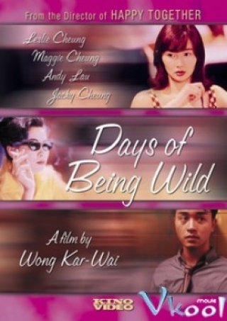 Phim Những Ngày Hoang Dại - Days Of Being Wild (1990)